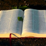 Is-the-Bible-reliable-and-trustworthy-