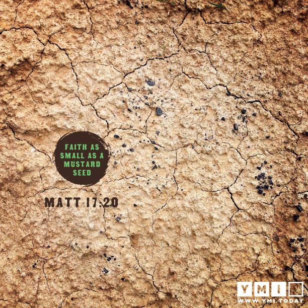 Matthew 17:20