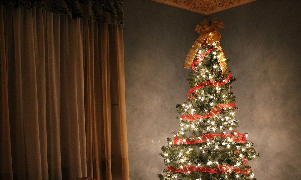 how to set up a christmas tree