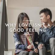 Why-Love-isnt-a-Good-Feeling